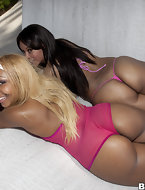 In today's feature is big ass Cocoa & Ms. Desire. These two ladies have lots of fat booty and love to make dick creme all over them.